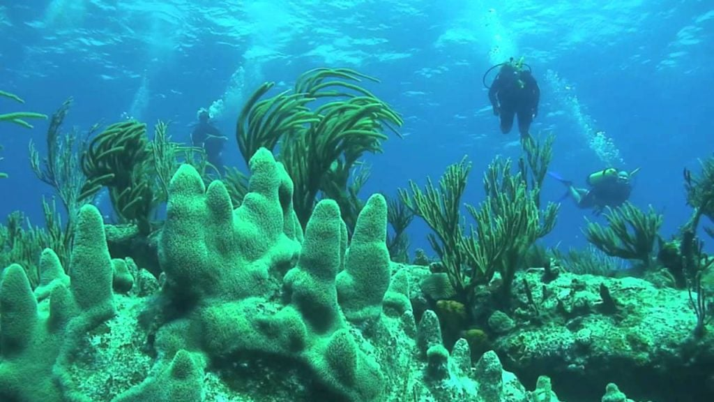 Scuba Diving in Cox's Bazar St. Martin's Island